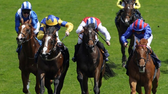 Horse Racing Hospitality packages at royal ascot