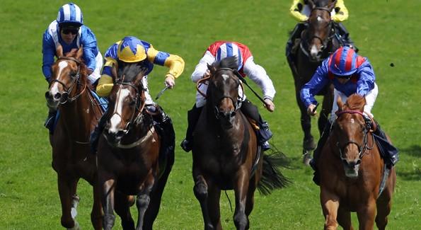 Racecourse Hospitality